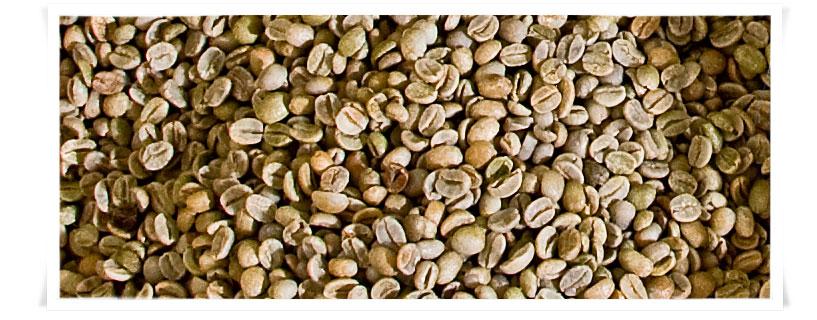 Le grandi categorie di caffè